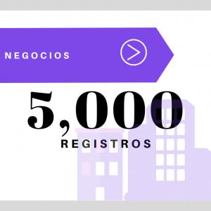 5,000 Registros – Negocios USA