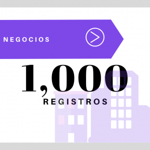 1,000 Registros Negocios USA