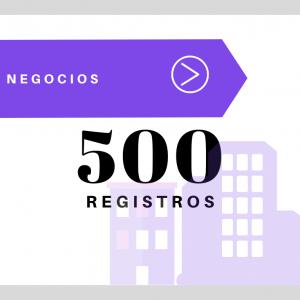 500 Registros – Negocios USA