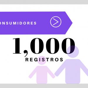 1000 Registros Consumidores USA